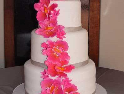 4keep Cake