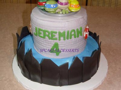 Ninja Turtle Sewer Cake